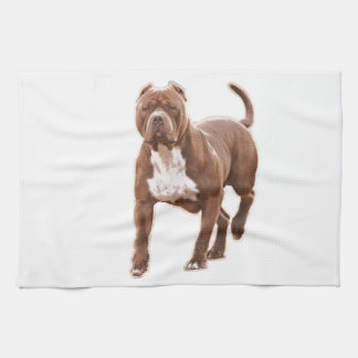 Pit bull brown kitchen towel