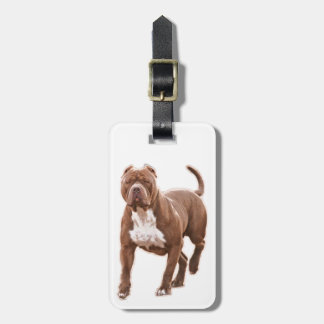 Pit bull brown luggage tag