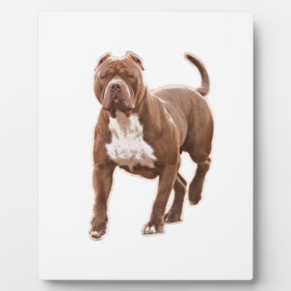 Pit bull brown plaque