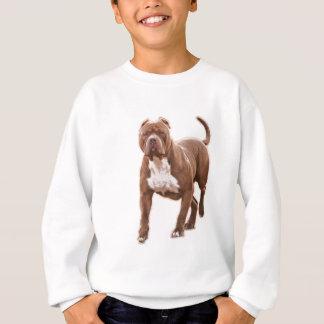 Pit bull brown sweatshirt