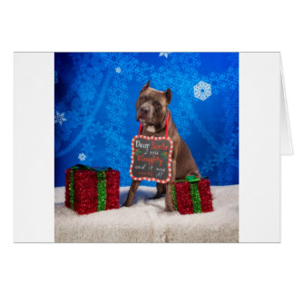 Pit-Bull Christmas Card