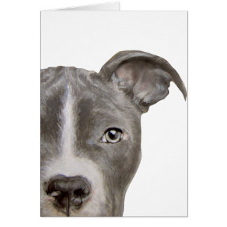 Pit bull Original painting and design by miart Card