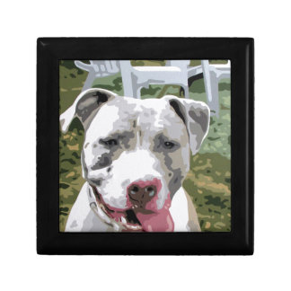 PIT BULL OTIS JEWELRY BOX