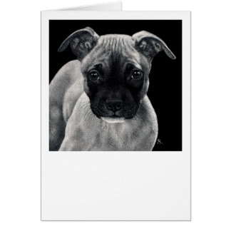 """Pit Bull Pup Card - """"Mr. Mischief"""""""