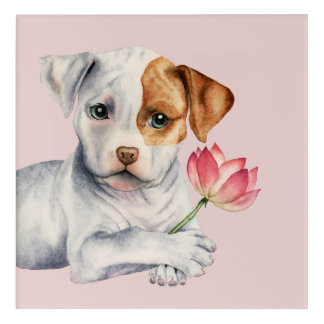 Pit Bull Puppy Holding Lotus Flower Painting Acrylic Wall Art