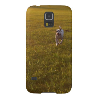 Pit Bull T-Bone Case For Galaxy S5