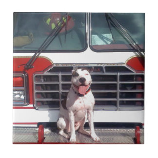 Pit Bull T-Bone Fire House Dog Tile