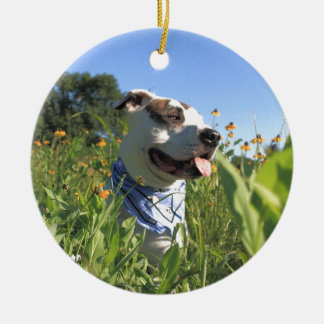 Pit Bull T-Bone Spring Round Ceramic Ornament