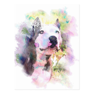 Pit Bull Water Colour Postcard