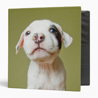 Pit Bull With Black Spotted Eye Binder