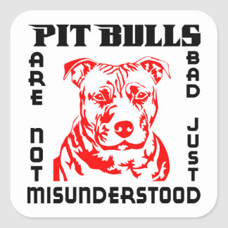 PIT BULLS ARE NOT BAD SQUARE STICKER