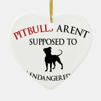 Pit bulls design cute ceramic heart ornament