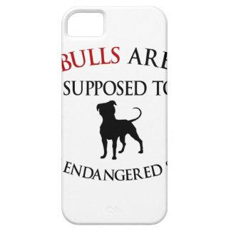Pit bulls design cute iPhone 5 covers