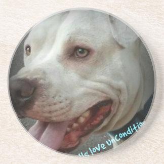 Pit bulls love unconditionally coaster