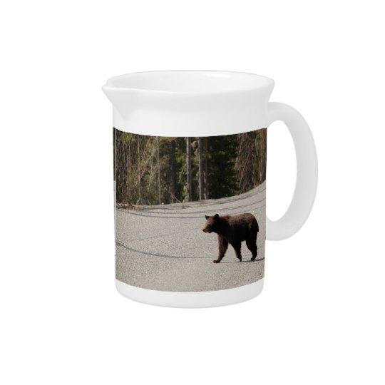 Pit Cher bear in Alaska Pitcher