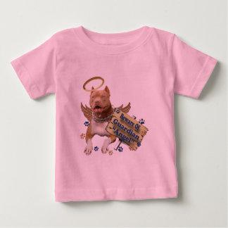 Pitbull Beware Of Guardian Angel Baby T-Shirt