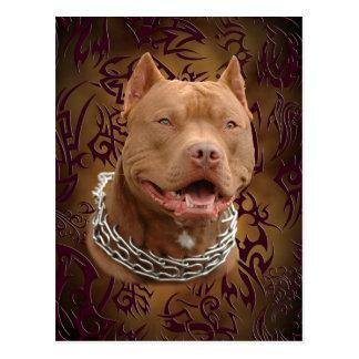 Pitbull brown tribal tattoo postcard