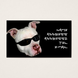 Pitbull business cards