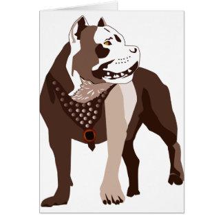 Pitbull Card