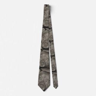 Pitbull/Dachshund Dog Tie