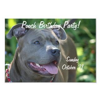 "Pitbull dog 3.5"" x 5"" invitation card"