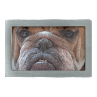 Pitbull Dog Animal Rectangular Belt Buckle