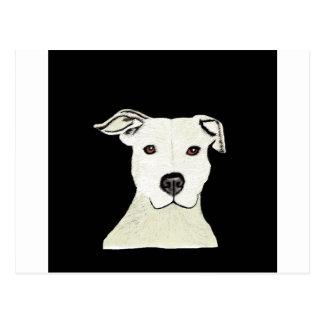 Pitbull dog breed postcard