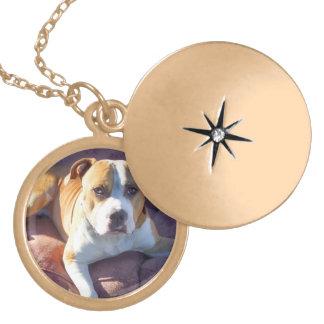Pitbull dog lockets