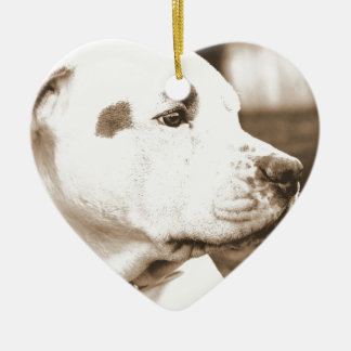 pitbull dog sepia color hate deed not breed ceramic heart ornament