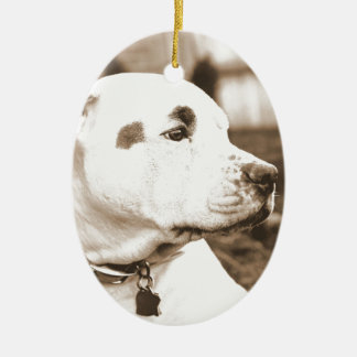 pitbull dog sepia color hate deed not breed ceramic oval ornament