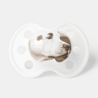 pitbull dog sepia color hate deed not breed pacifiers