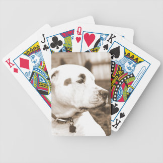 pitbull dog sepia color hate deed not breed poker deck