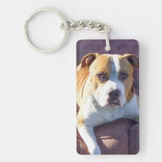 Pitbull dog Single-Sided rectangular acrylic keychain