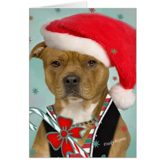 Pitbull Dresses for Santa Card