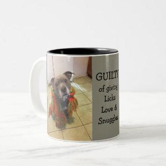 Pitbull Guilty of Love Mug