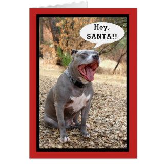 Pitbull Hey Santa Christmas Card