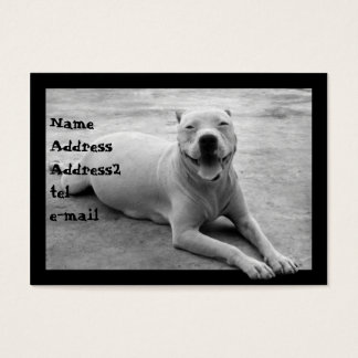 Pitbull in black and white business card
