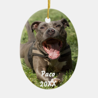 Pitbull In Grass Ceramic Ornament