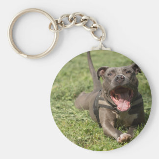 Pitbull In Grass Keychain