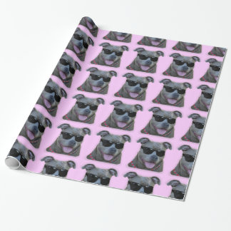 Pitbull in sunglasses  dog wrapping paper