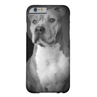 Pitbull iPhone Case