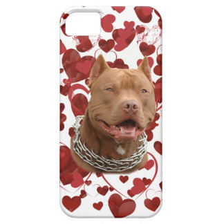 Pitbull love case for the iPhone 5