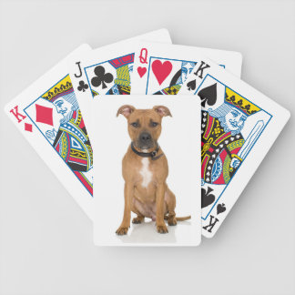 Pitbull Poker Deck