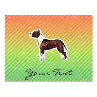 Pitbull Postcard