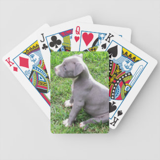 PITBULL PUPPY PLAYING CARDS