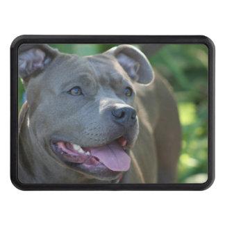 Pitbull terrier dog trailer hitch cover