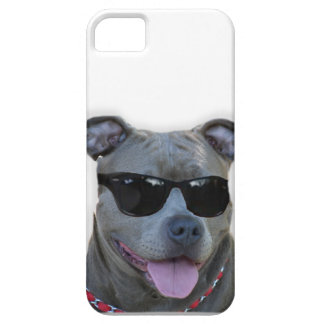 Pitbull with glasses iPhone 5 cover