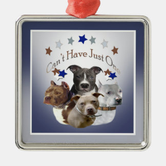 Pitbulls can't have just one Silver-Colored square ornament