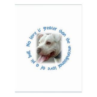 Pitbulls love unconditionally 2 postcard