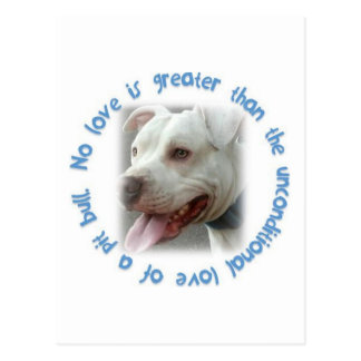 Pitbulls love unconditionally postcard